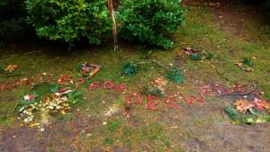 Herbst in der Kindervilla 2017 (800x450)
